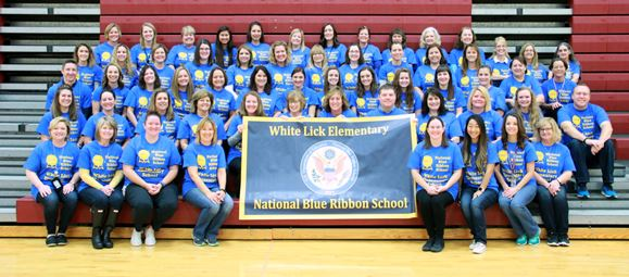 White Lick Staff with Blue Ribbon Banner